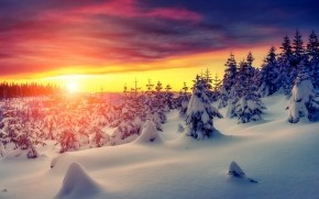 Gorgeous Winter Sunrise
