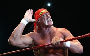 Hulk Hogan Salute wallpaper