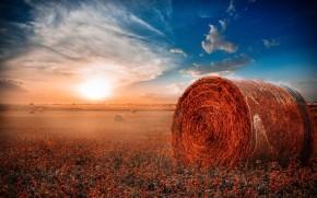 Hay Rolls Field