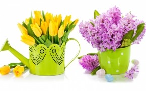 Purple Lilac and Yellow Tulips wallpaper