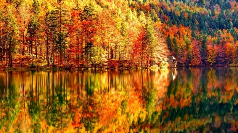 landscape autumn hd wallpaper - photo #13