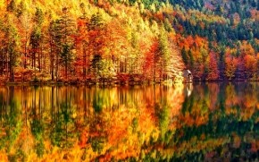 Autumn Landscape wallpaper