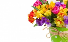 Daffodils and Freesias Bouquet wallpaper