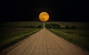 Yellow Full Moon wallpaper
