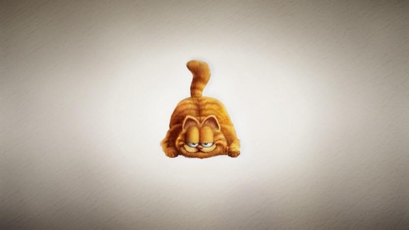 Garfield The Cat Hd Wallpaper Wallpaperfx