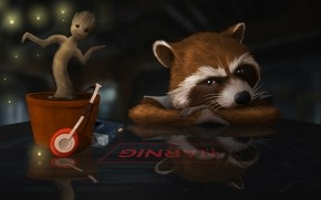 Guardians of the Galaxy Raccoon  wallpaper