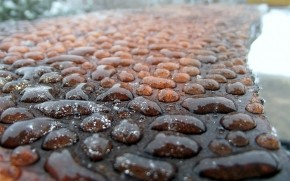 Rain Water Droplets wallpaper