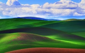 Green Grass Field wallpaper