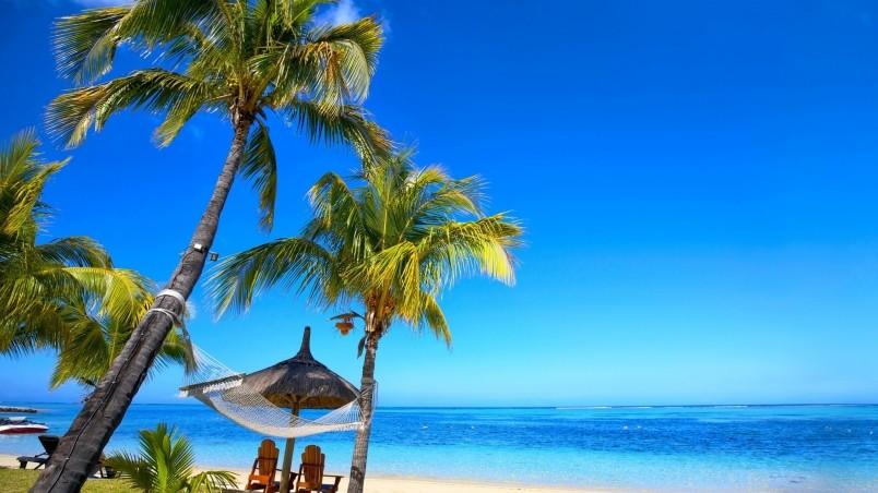 Paradise Palm Beach HD Wallpaper