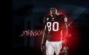 Andre Johnson Houston Texans wallpaper