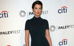 Cobie Smulders Paley Fest wallpaper