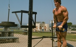 Young Arnold Schwarzenegger Workout wallpaper