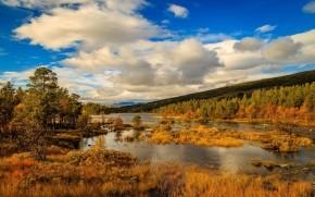 Norway Autumn Landscape