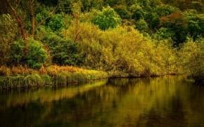 Derbyshire Park Landscape