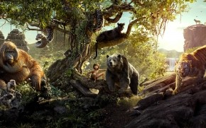 The Jungle Book 2016 Movie wallpaper