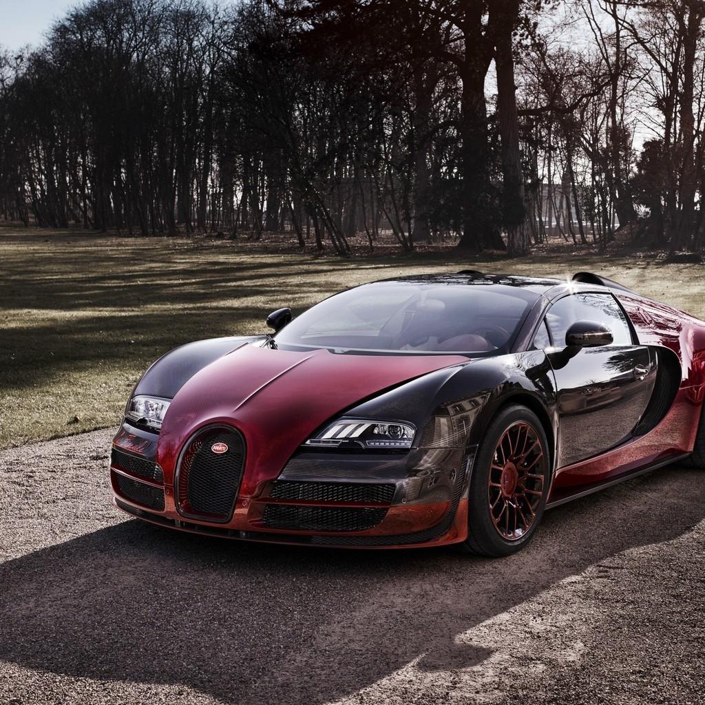 Wallpaper Bugatti Veyron Grand Sport Vitesse Sports Car: 2015 Bugatti Veyron Grand Sport Vitesse 1024 X 1024 IPad