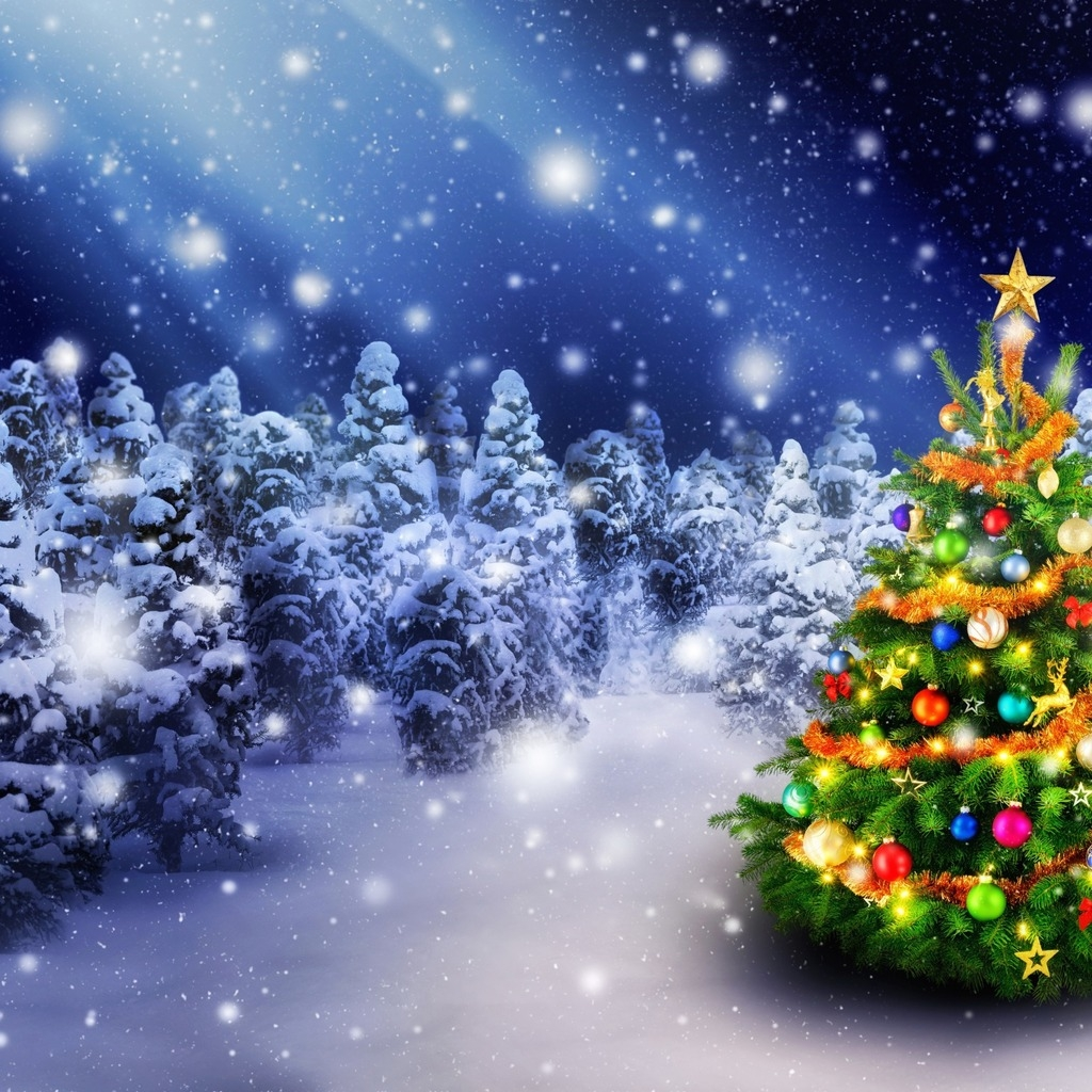 2016 Christmas Tree for 1024 x 1024 iPad resolution