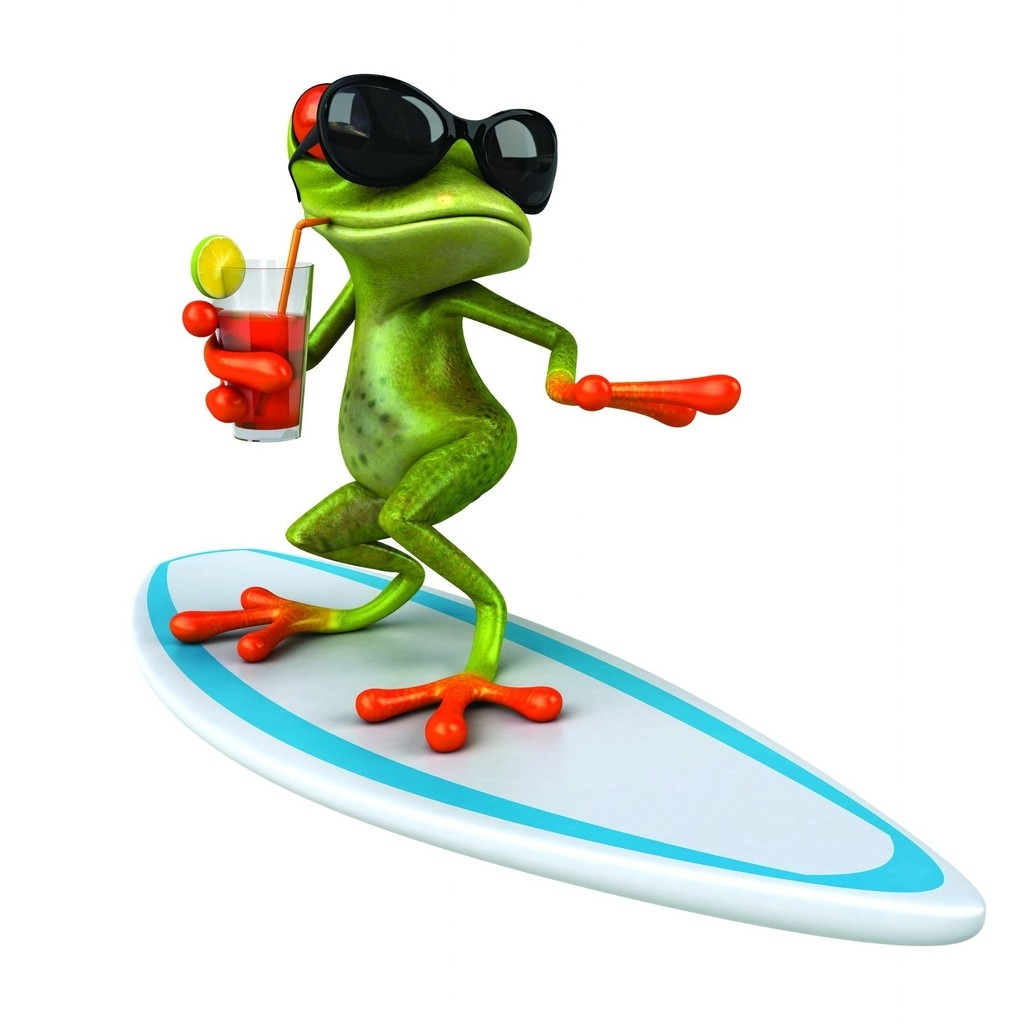 3D Frog Surfing  for 1024 x 1024 iPad resolution