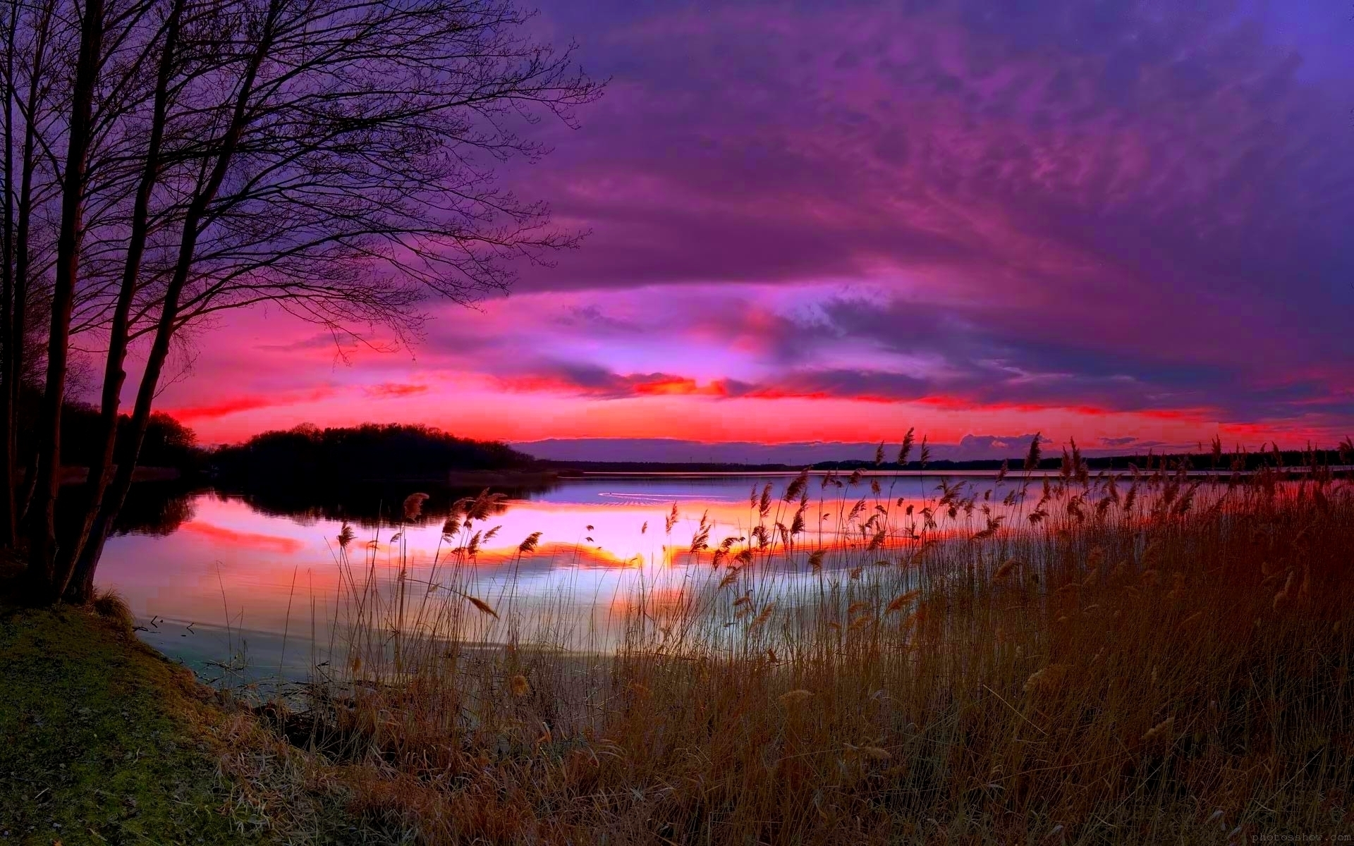Amazing Purple Sunset for 1920 x 1200 widescreen resolution