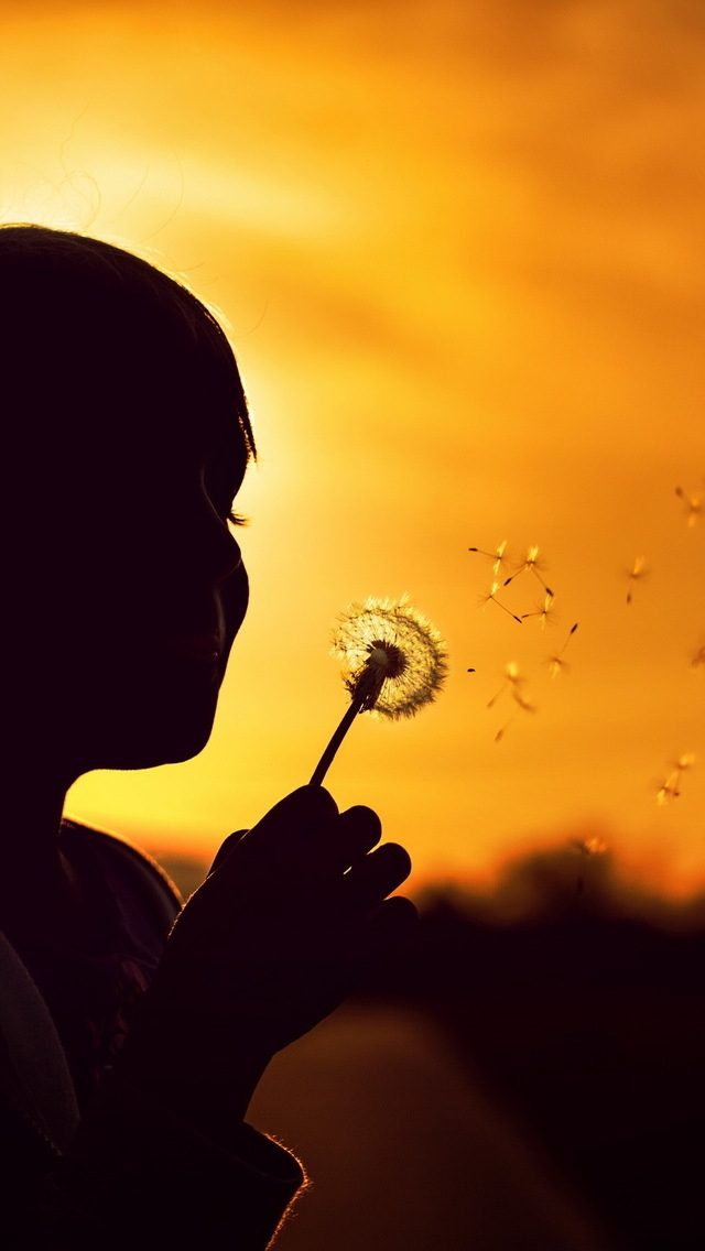 Blowing Dandelion for 640 x 1136 iPhone 5 resolution