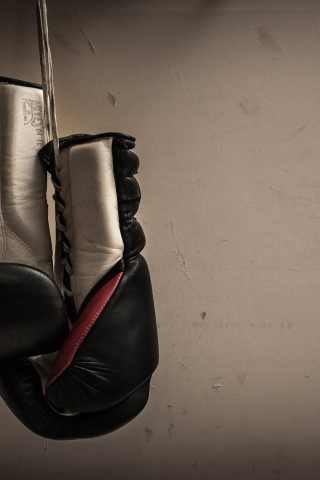 Boxing Gloves Hanging For 320 X 480 IPhone Resolution