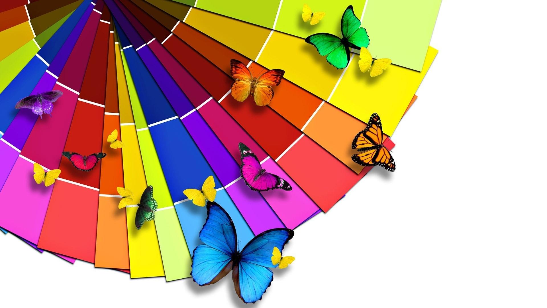 Butterfly Range 1920 x 1080 HDTV 1080p Wallpaper