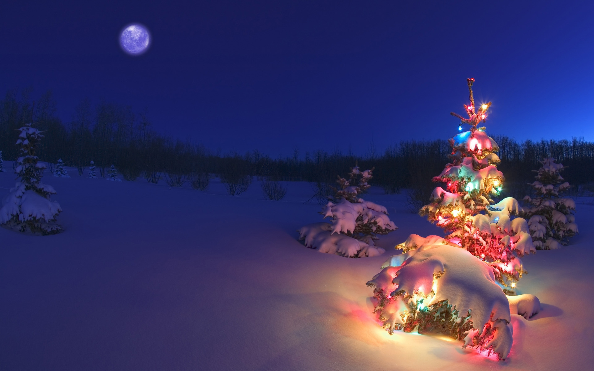 Christmas Tree for 1920 x 1200 widescreen resolution