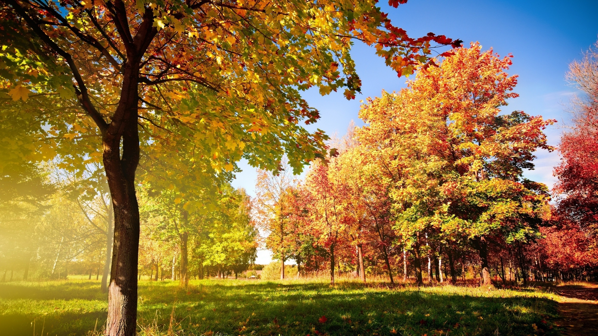 Colorful Autumn Landscape for 1920 x 1080 HDTV 1080p resolution