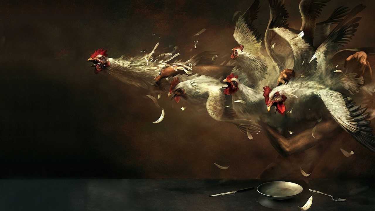 Crazy Chickens for 1280 x 720 HDTV 720p resolution