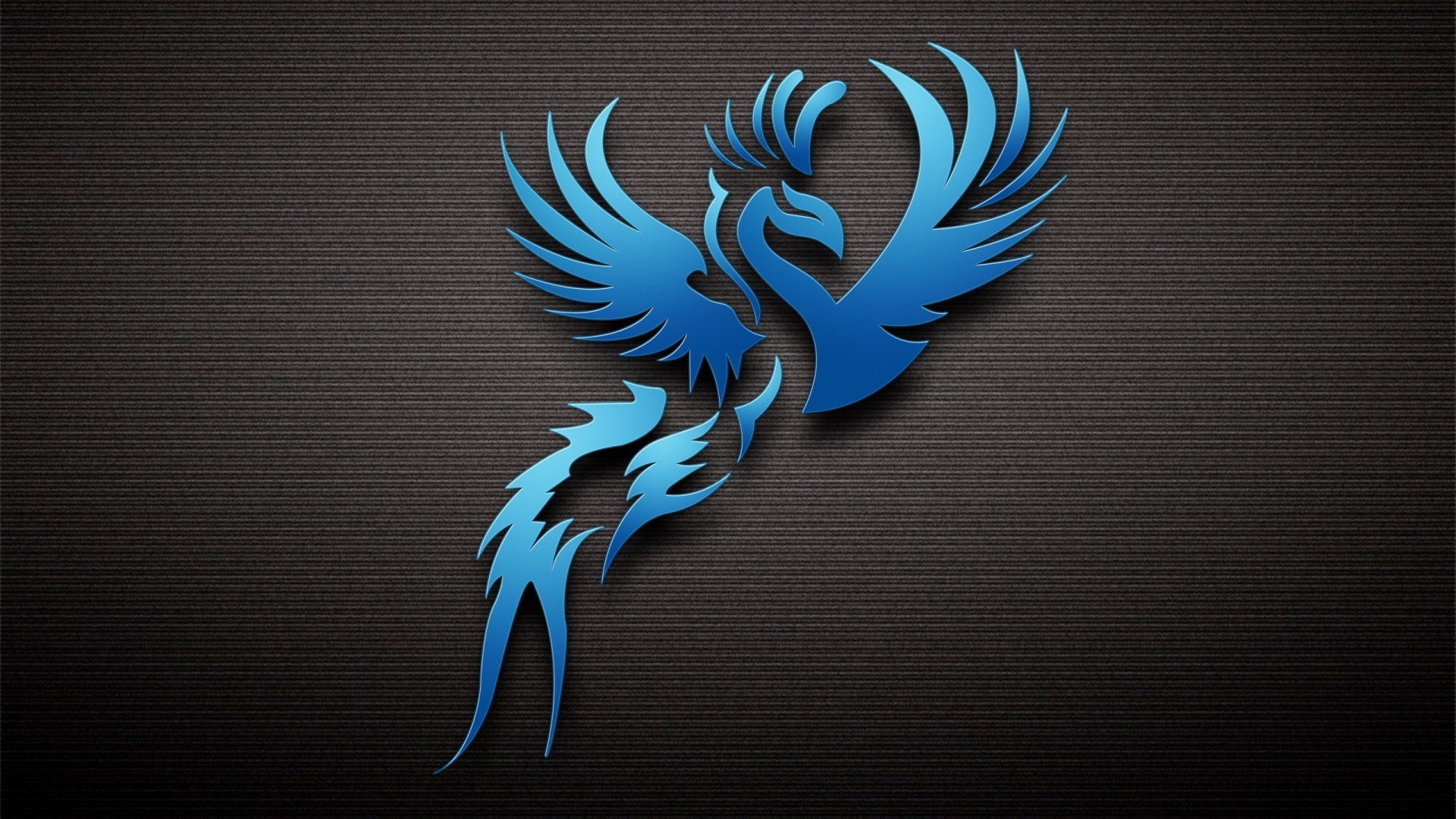 Dark Blue Bird 1920 x 1080 HDTV 1080p Wallpaper