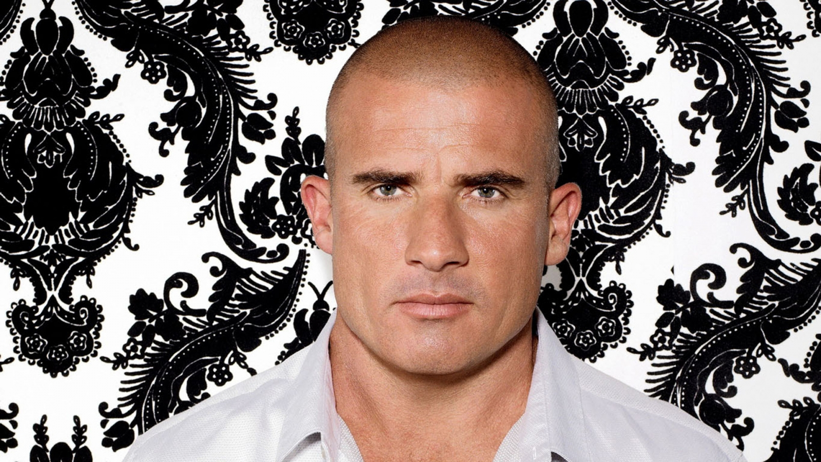 Dominic Purcell for 1600 x 900 HDTV resolution