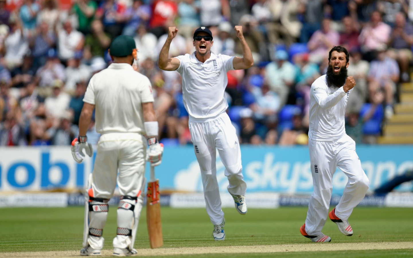 England Cricket for 1440 x 900 widescreen resolution