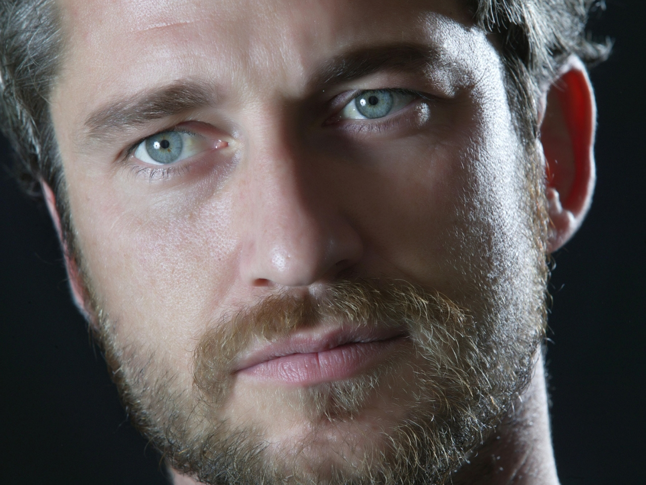 Gerard Butler Close Up for 1280 x 960 resolution