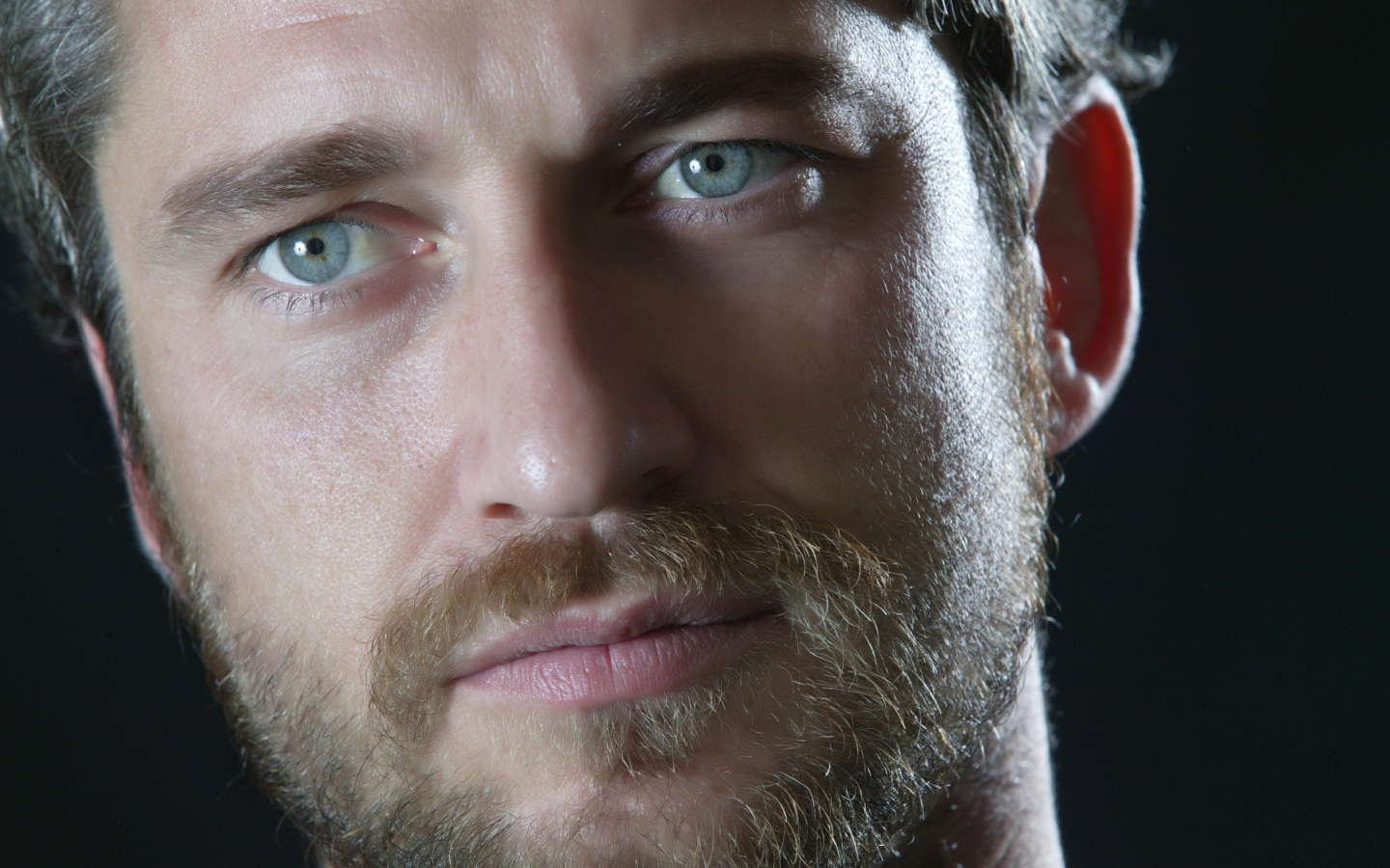 Gerard Butler Close Up for 1440 x 900 widescreen resolution