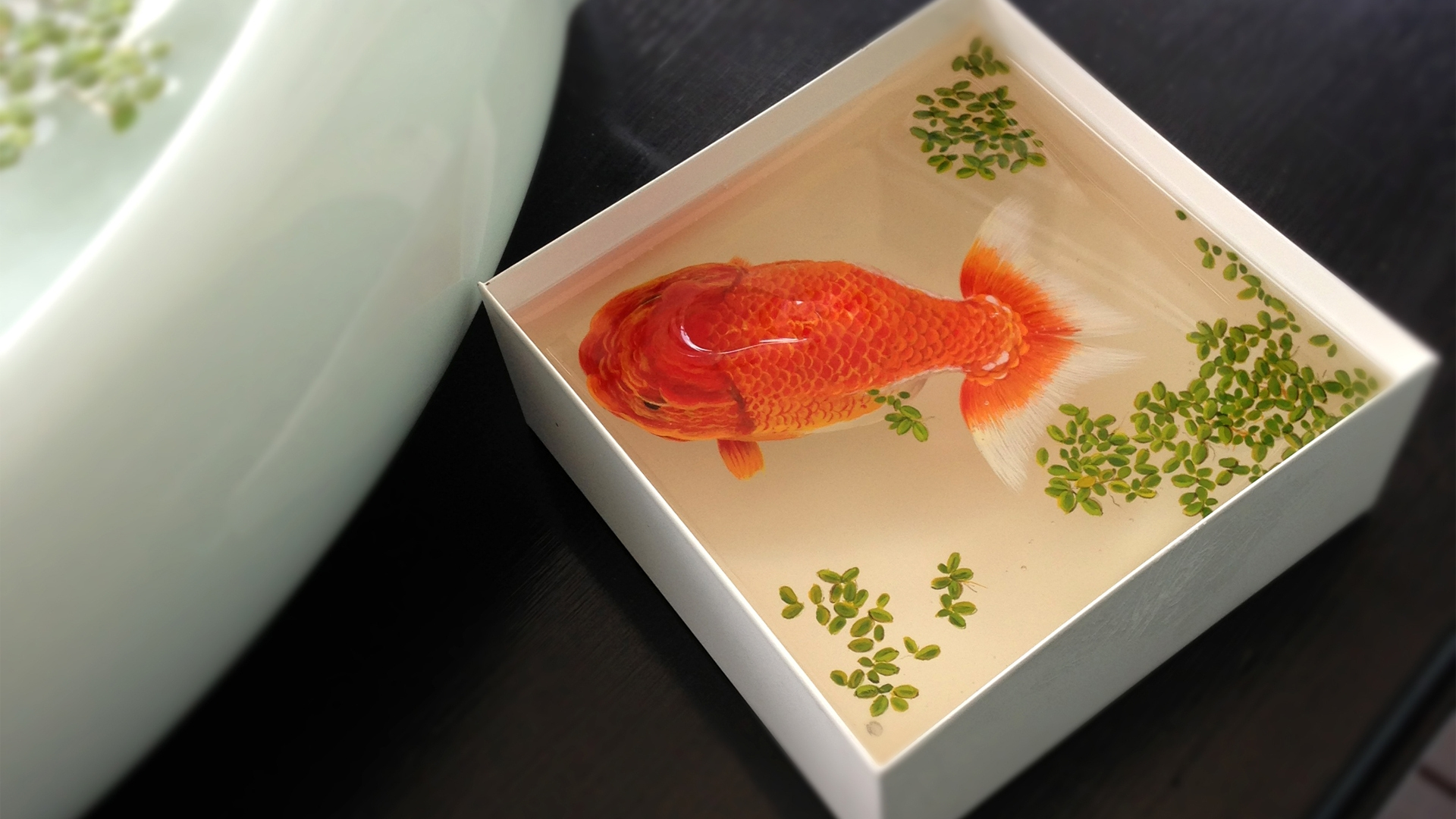 Gold Fish for 1920 x 1080 HDTV 1080p resolution
