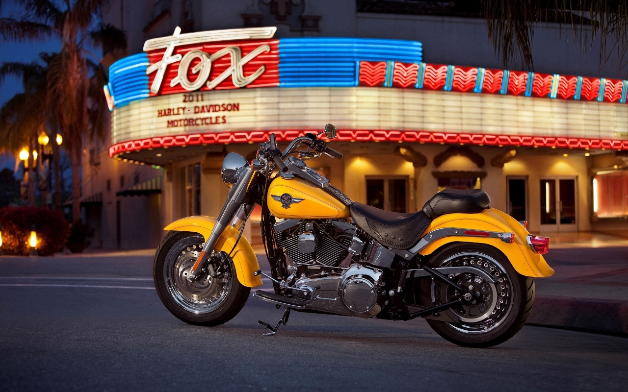 Harley Davidson Fatboy for 1280 x 800 widescreen resolution