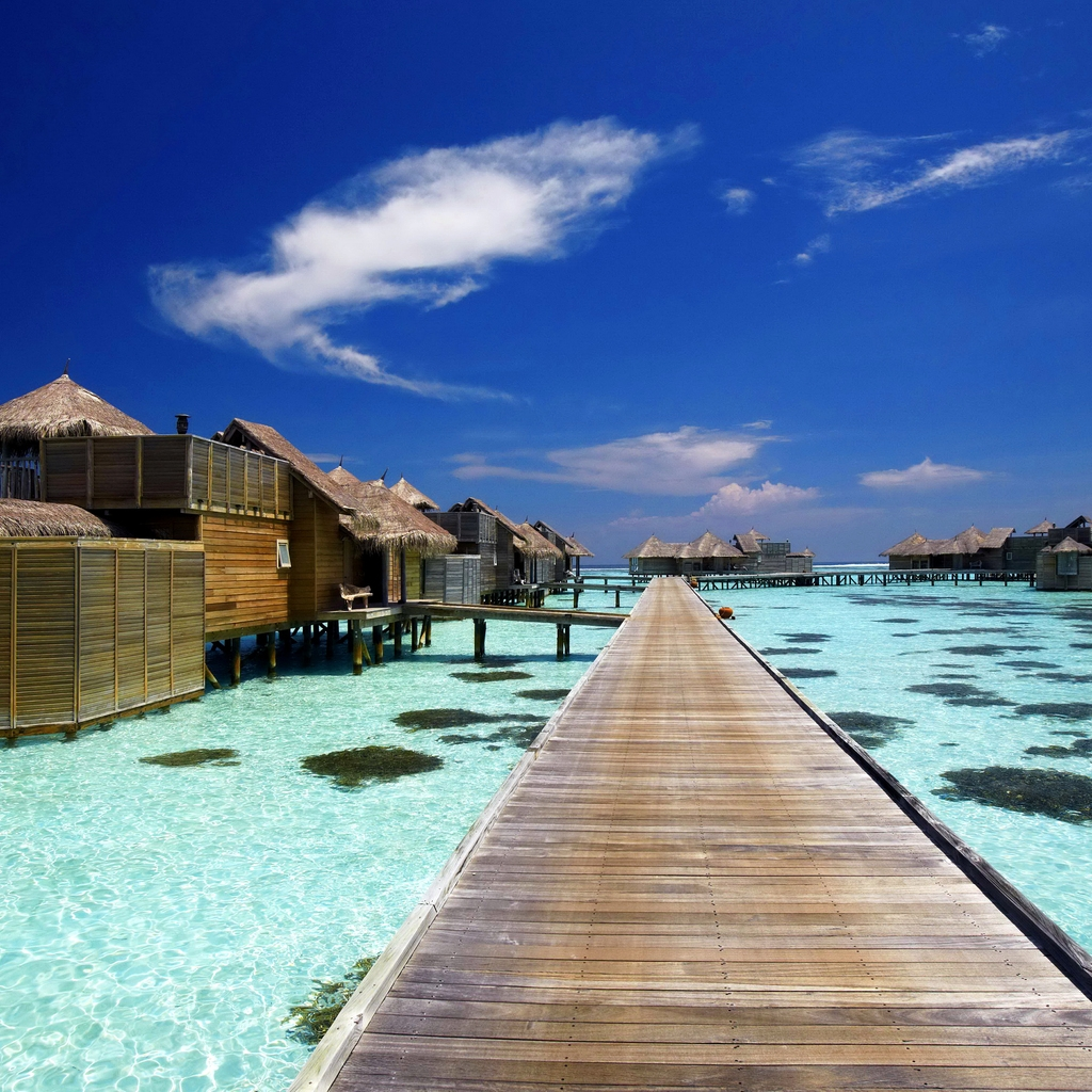 Luxury Resort in Maldives for 1024 x 1024 iPad resolution