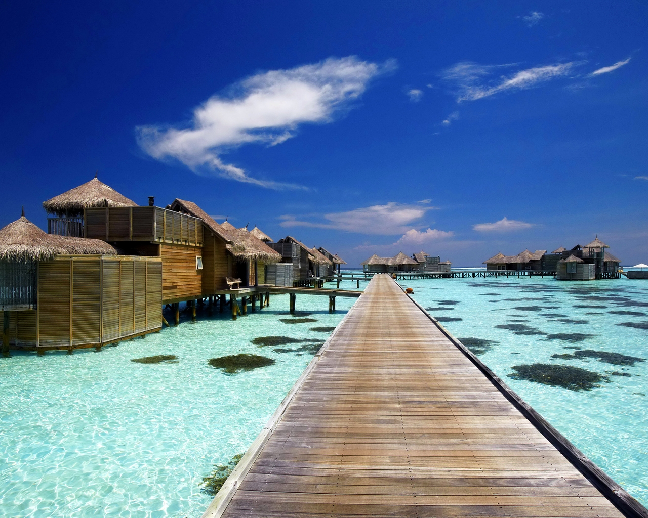 Luxury Resort in Maldives for 1280 x 1024 resolution