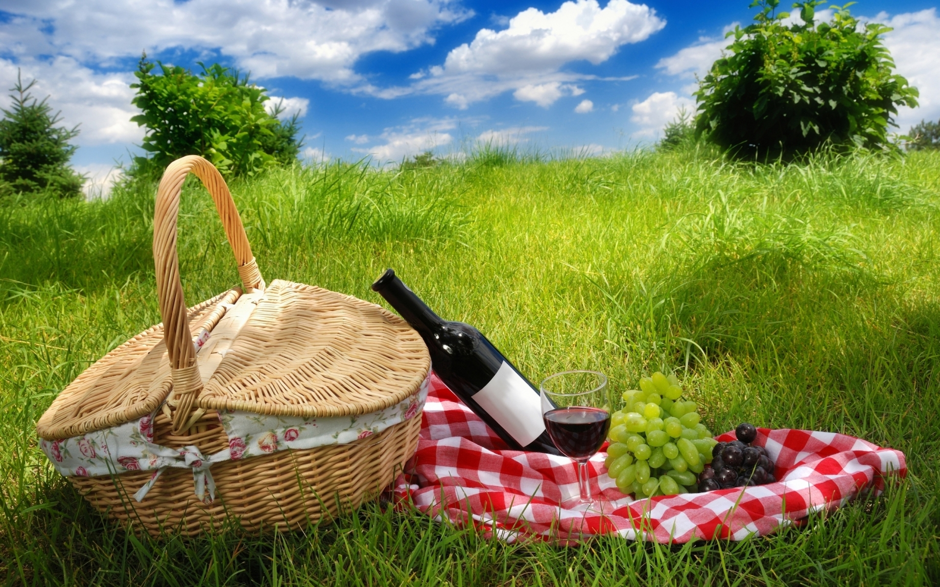 Picnic for 1920 x 1200 widescreen resolution