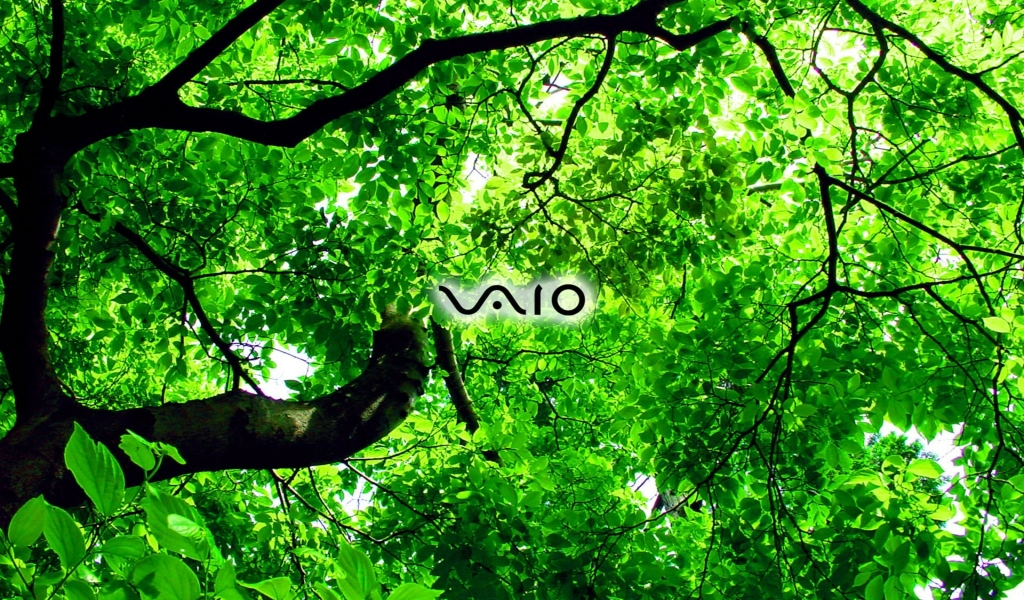 sony vaio wallpaper. Sony Vaio green 1024x600