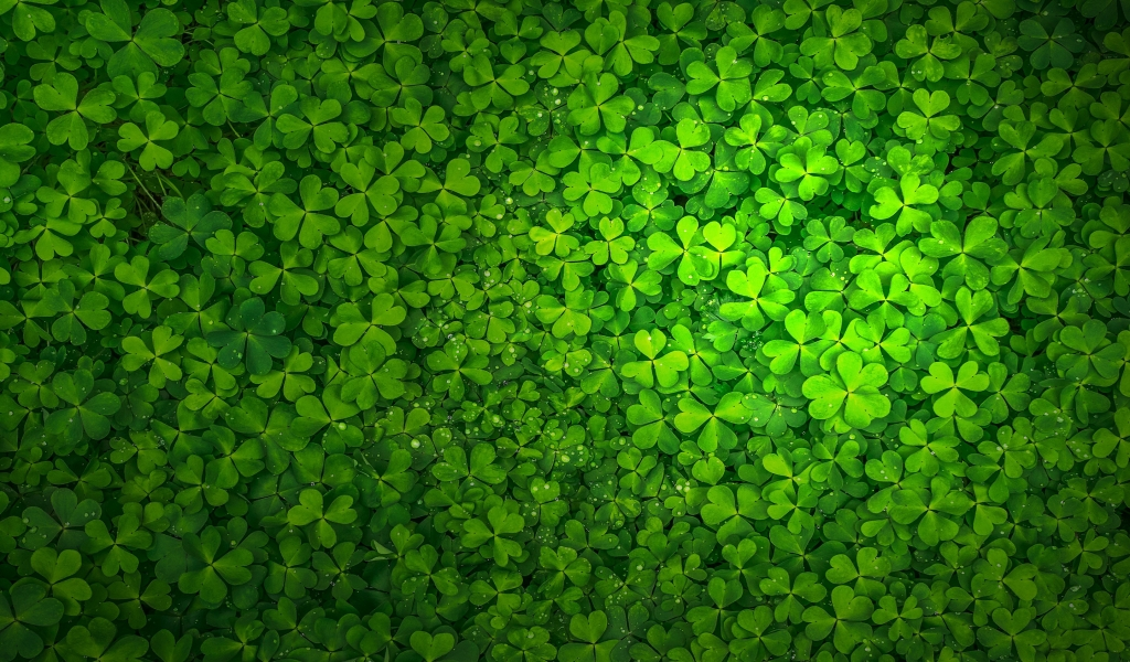St Patrick's Day for 1024 x 600 widescreen resolution