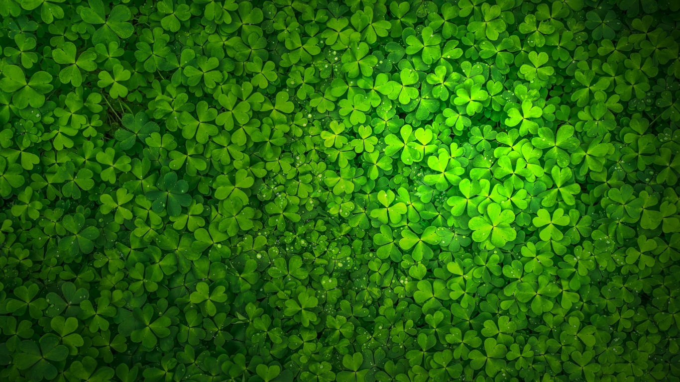 St Patrick's Day for 1366 x 768 HDTV resolution