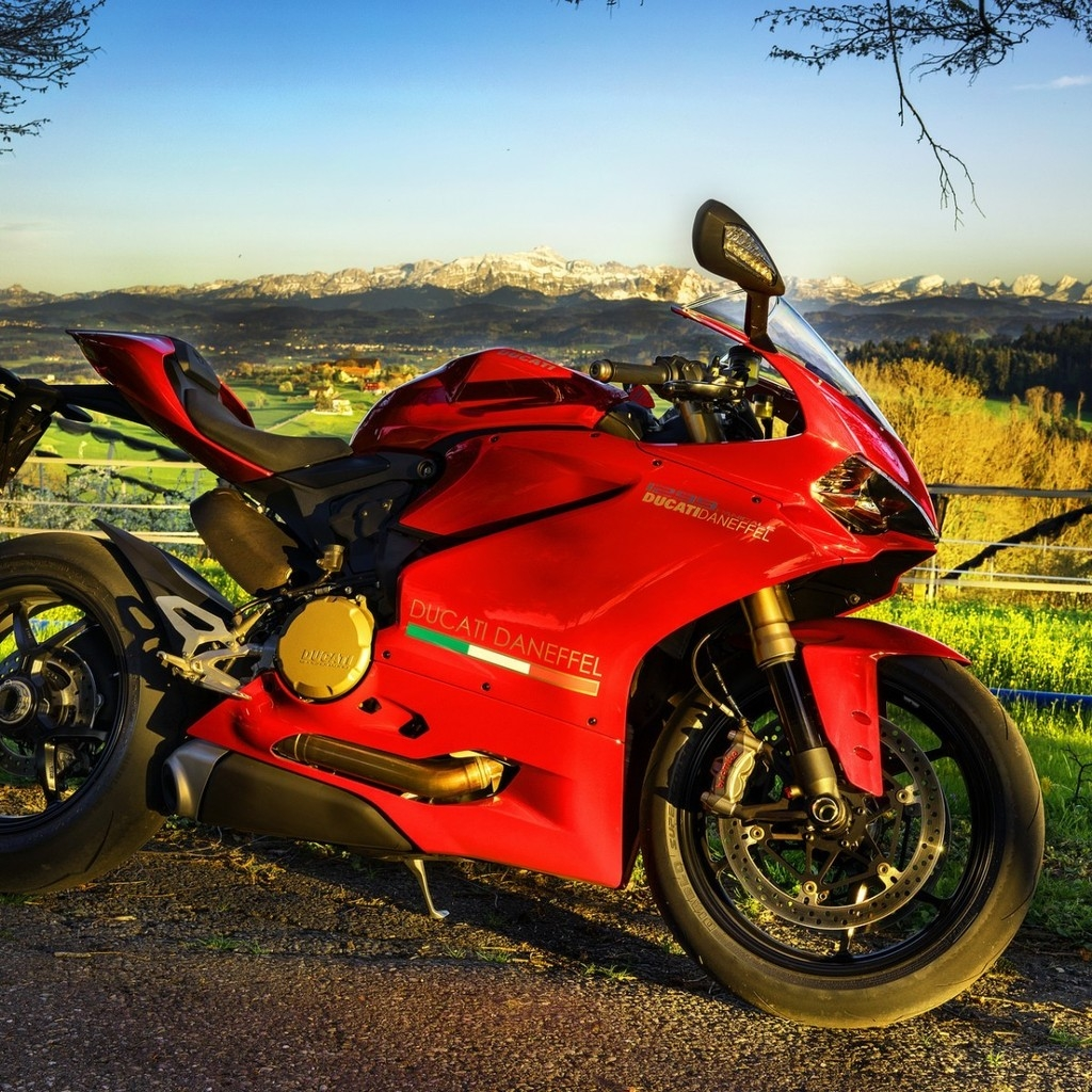 Stunning Red Ducati  for 1024 x 1024 iPad resolution