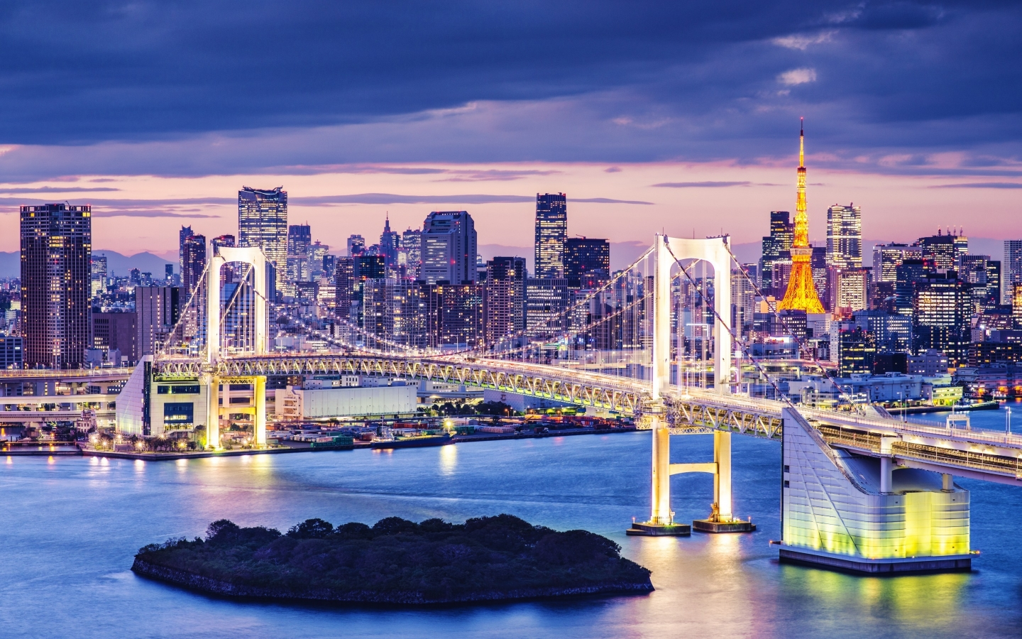 Tokyo Night View  for 1440 x 900 widescreen resolution