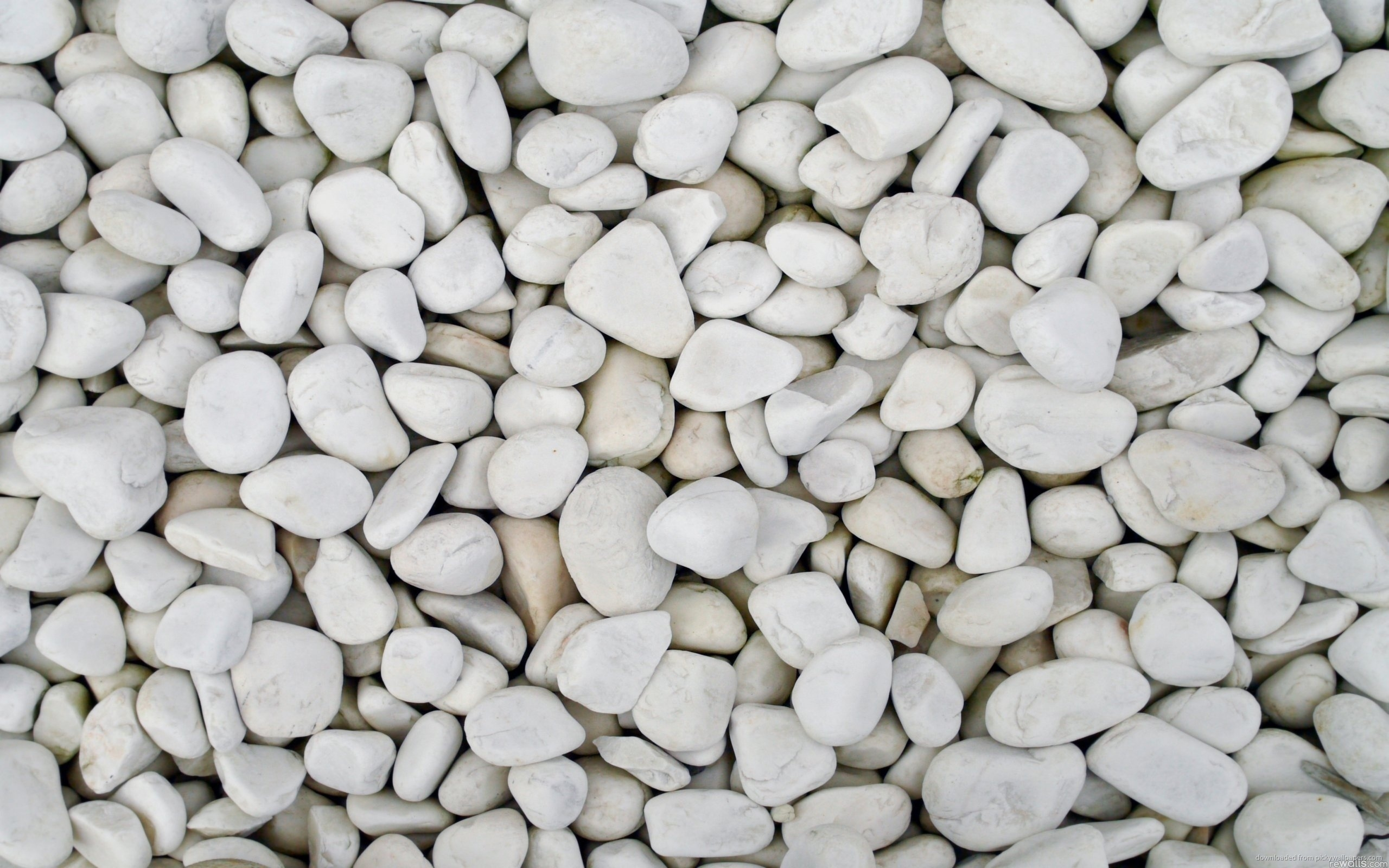 White Pebbles for 2560 x 1600 widescreen resolution