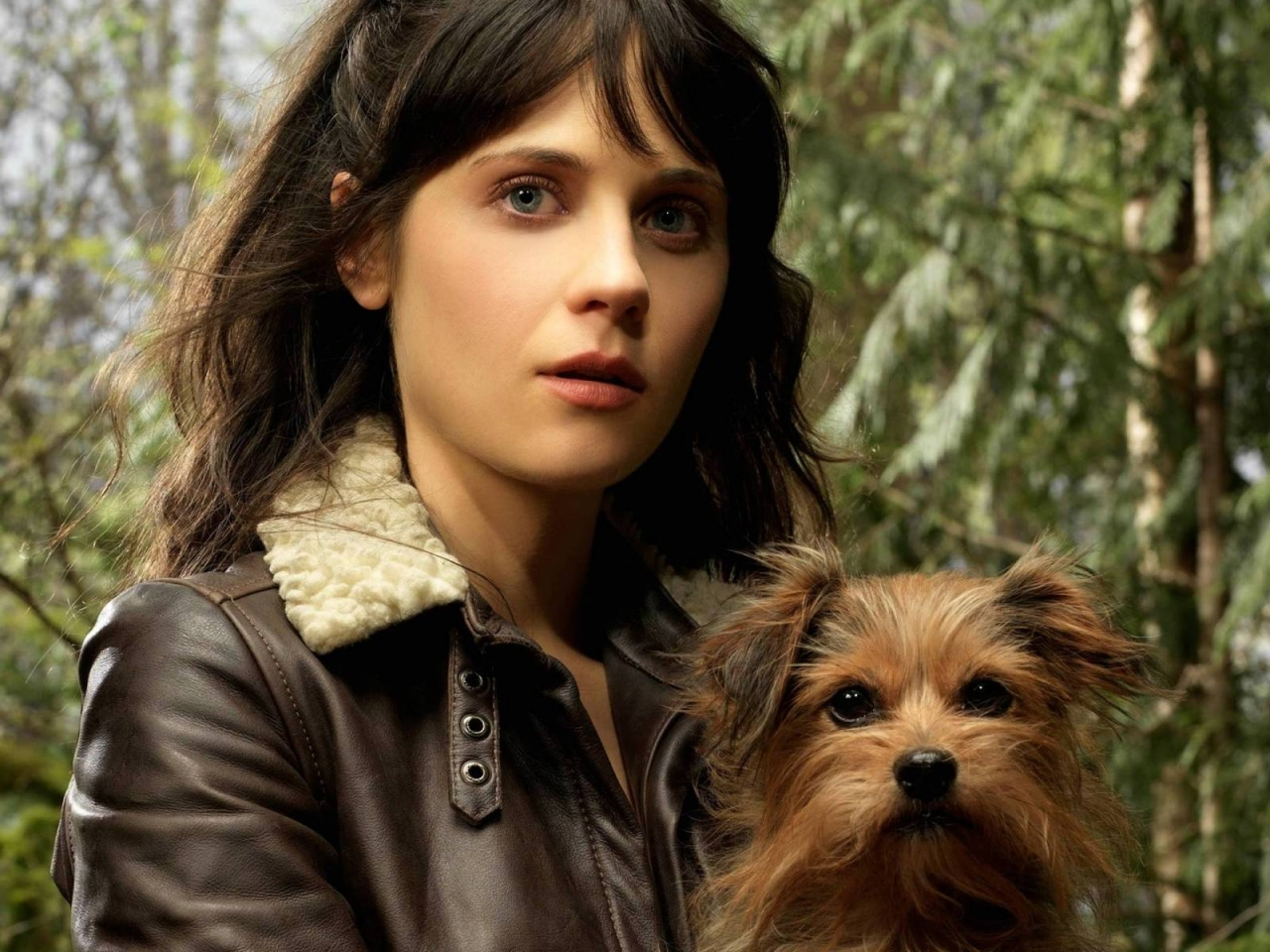 Zooey Deschanel Little Dog for 1280 x 960 resolution